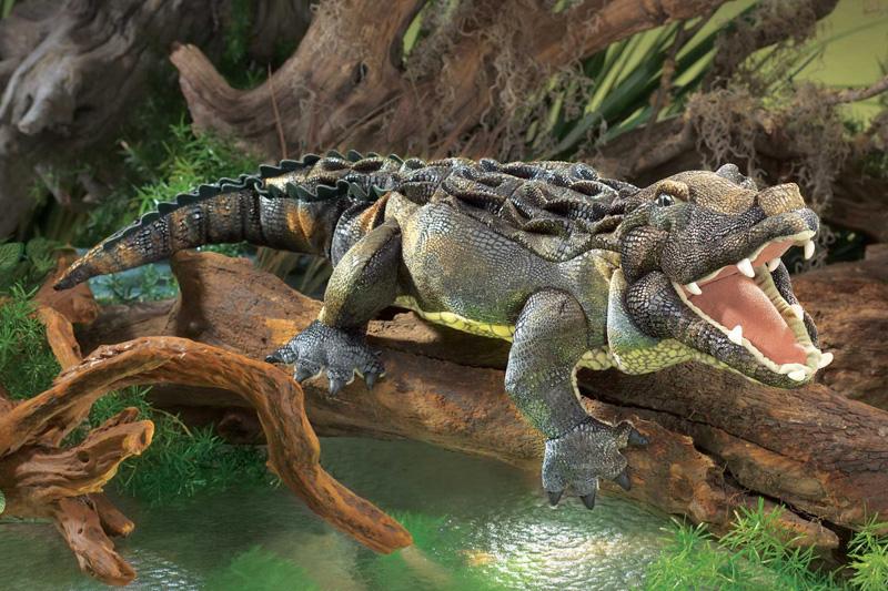 Alligator American Folkmanis