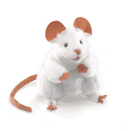 Domest Mouse, White(1)