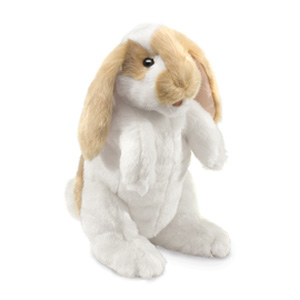 Rabbit Standing Lop (1)
