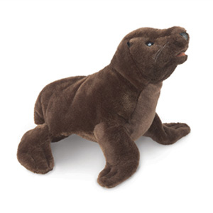 Sea Lion Pup(1)