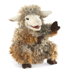 Domest Lamb, Woolly(1)