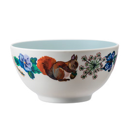 Bowl Squirrels(1)