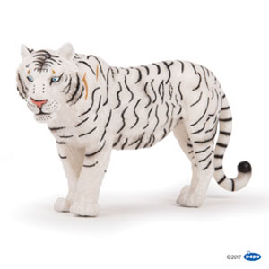 Large white tigress(1)