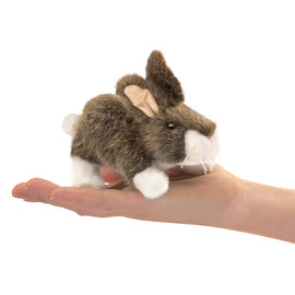 Rabbit Cottontail, Finger (4)