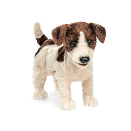 Dog, Jack Russell Puppet