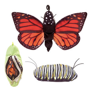 LifeCycle, Monarch Puppet