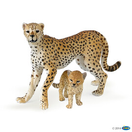 zzWildCheetah with cub